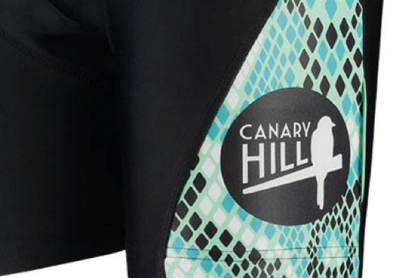Web design services: logo design Canary Hill